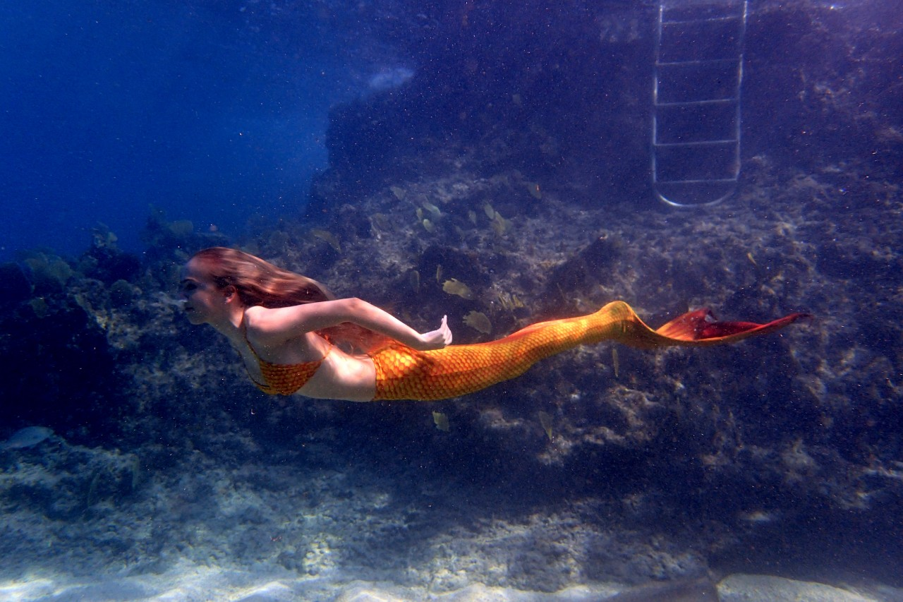 Grand Cayman is full of surprises…